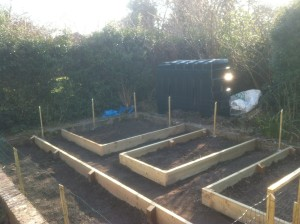 Veg patches and minimal fencing